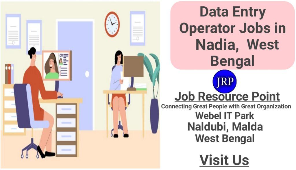 Data Entry Jobs in Nadia